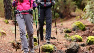 تصویر ۲۲ مدل عصای کوهنوردی ارزان و باکیفیت با قیمت روز و خرید اینترنتی