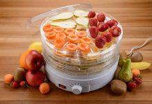 هنگام خرید دستگاه میوه خشک کن باکیفیت چه نکاتی را باید رعایت کنیم؟