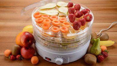 تصویر ۵ مدل دستگاه میوه خشک کن باکیفیت به همراه قیمت روز و خرید اینترنتی