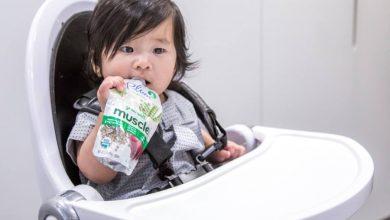 تصویر بهترین مدلهای صندلی غذاخوری کودک با قیمت روز