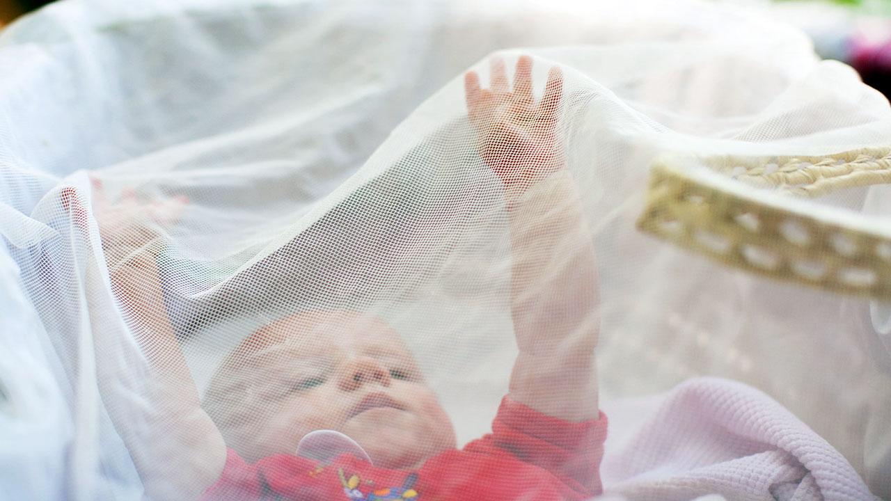 راهنمای خرید پشه بند کودک
