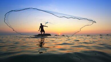 تصویر تور ماهیگیری: معرفی بهترین تورهای ماهیگیری با خرید اینترنتی