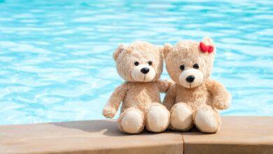تصویر خرس عروسکی: معرفی بهترین خرسهای عروسکی با خرید اینترنتی